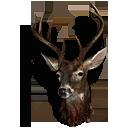 big_deer_head.png