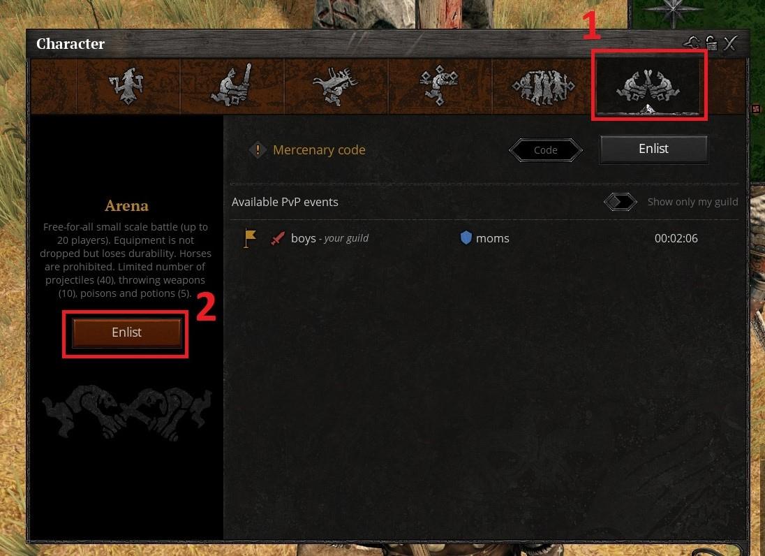 guide_arena1.jpg